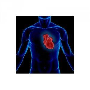 kardioloji-urun-grubu